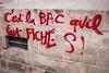 "#Manif10octobre #Nantes #GameOfTags: ""C'est la BAC qu'il faut FICHER S ! "" (ValK.) Tags: gameoftags loitravailxxl pjlterrorisme loitravail cabanedupeuple etatdurgencepermanant maisondupeuple nantes politique valk demonstration fonctionpublique graff graffiti greve intersyndicale manifestationunitaire social tag france fr"