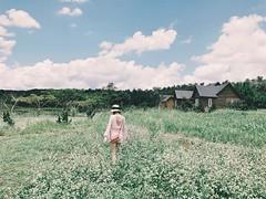 'Quẳng gánh lo đi' hãy đến với mùa hoa tam giác mạch ngập sắc hồng (fiditourhathanhbinh) Tags: fiditour dulịchhàgiang hàgiang đôngbắc dulịchtrongnước