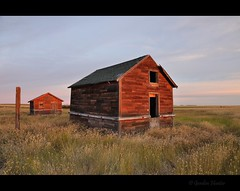 still in the glow (Gordon Hunter) Tags: warm glow sun first light sunrise buildings old decayed dilapidated abandoned shed shop house home shack post field farm rural country prairies ab alberta summer canada gordon hunter nikon d5000 august