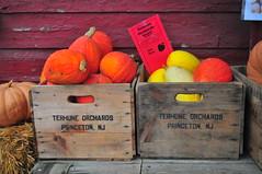 Terhune Orchards (Triborough) Tags: nj newjersey mercercounty princetontownship princeton terhuneorchards
