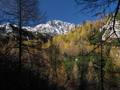 Rž (Damijan P.) Tags: hribi gore hiking mountains slovenija slovenia alpe julijskealpe alps julianalps krma velikipršivec jesen autumn prosenak