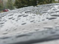 279/365 - Rain drops