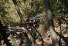 DSC01834 (cassolclaudio) Tags: montagna ferrata rio secco trento