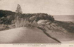 Shifting Sands, Indiana Dunes, circa 1930s - Chesterton, Indiana (Shook Photos) Tags: postcard postcards beach sand shore shoreline lakemichigan indianadunes sanddune chestertonindiana chesterton indiana portercounty