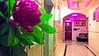 WP_20171022_17_10_25_Rich (AbdulRahman Al Moghrabi) Tags: فندق فنادق شقق مفروشة وحدات سكنية استقبال مباني مبنى مدينة جدة ديكور reception hotel furnished apartments photo city building jeddah jiddah abdulrahmanalmoghrabi