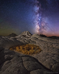 "White Pocket NightScape (IronRodArt - Royce Bair (""Star Shooter"")) Tags: milkyway nightscape nightscapes starrynightsky nightphotography whitepocket vermillioncliffs vermillioncliffsnationalmonument arizona geology sandstone"