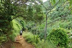 DSC03336 (tammyloh) Tags: 2017 kalalautrail napalicoast kauai hawaii hiking babymoon tamron travel 28weekspregnant