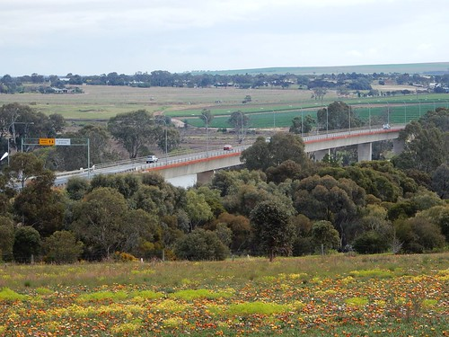 Freeway Bridge Over the Murray
