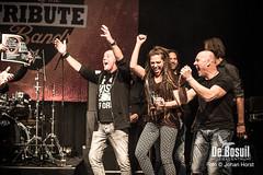 2017_10_28 Bosuil Battle of the tributebandsJOE_6943-Johan Horst-WEB