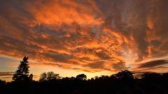 October Skies (Explored) (tsbl2000) Tags: sky sunset autumn nikond810 nikon1835mmf3545d