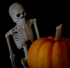 Pumpkinator  -  HMM! (Kreative Capture) Tags: macromonday macromondays halloween pumpkin skeleton bones hmm spooky nikkor nikon d7100 7dwf scary