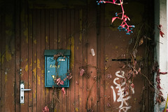 past due (letterbox, autumnal) (Neko! Neko! Neko!) Tags: colour autumn letterbox letters abandoned forgotten door nostalgia past symbolic europe poland polska