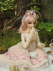 9 (Anerianek) Tags: kei rosengarde blueberry doll bjd dalha sadol ayuana