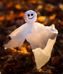floating ghost (auntneecey) Tags: ghost halloween morning lightiseverything 365the2017edition 3652017 day303365 30oct17 odc spooky macro macromonday
