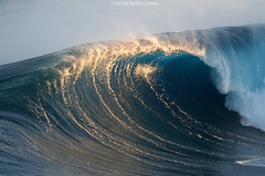 IMG_5177 copy (Aaron Lynton) Tags: lynton procutions wsl surf peahi jaws canon 7d