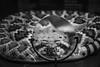 Look into my Eyes (Shastajak) Tags: larochejagu brittany château snake stuffed exhibition monochrome blackandwhite magnifyingglass