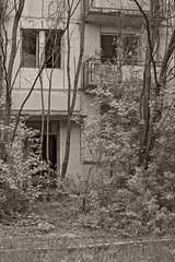 _MG_0241 (daniel.p.dezso) Tags: kecskemét laktanya orosz kecskeméti former soviet barrack urbex reclaim