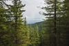 Outro (johnwporter) Tags: hiking scramble climbing cascades mountains stateforest issaquahalps tigermountain 徒步 爬行 攀登 喀斯喀特山脈 山 州立森林 伊薩闊阿爾卑斯 虎山