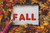 Fall_Frame_With_Text_5 (Julliard Kenneth) Tags: red fall autumn maple leaves colorful stockphotography stockphotos