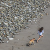 oh, joy! (MyArtistSoul) Tags: ventura ca pier beach sand girl dog running rocks diagonal minimal square 2796 s100