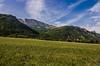 Le Gerbier (Joseph Trojani) Tags: montagne mountain alpes alps isere gerbier landscape paysage nikon d7000 ciel près champ mont sky vercors massif massifduvercors