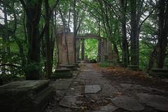 Ruinen im Wald (nordelch61) Tags: mecklenburg vorpommern insel rügen halbinsel jasmund sassnitz dwasieden wald schloss ruine 1948 gesprengt