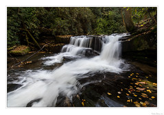 A Serene Rush (John Cothron) Tags: 15mm americansouth cpl canoneos5dmkiv carlzeiss chattahoocheeoconeenationalforest clarkesville cothronphotography distagon1528ze dixie georgia johncothron rabuncounty siblingfalls southatlanticstates southernregion thesouth us usa unitedstatesofamerica wildcatcreek wildcatcreekroad zeissdistagont2815mmze afternoonlight autumn circularpolarizingfilter clearsky creek environment fall fallcolor falling flowing forest freshwater landscape leaves longexposure nature outdoor outside protected river rockformations scenic stream sunny water waterfall img20865171014 ©johncothron2017 aserenerush