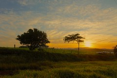 Bellenden Kerr Sunrise (Caleb McElrea) Tags: borderfx athertontableland farnorthqueensland wettropics worldheritagearea unesco queensland tropical hot warm humid australia topend bartlefrere bellendenkerr sunrise greenrollinghills