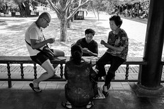 Poker face (Go-tea 郭天) Tags: beijing temple of heaven locals cards playing play game fun enjoy enjoying group 4 together men women seat seated sun sunny shadow glasses tshirt old grandma grandpa granny grandmother grandfather candid street urban city outside outdoor people bw bnw black white blackwhite blackandwhite monochrome naturallight natural light asia asian china chinese canon eos 100d 24mm prime