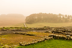 Beware the Barbarians (Keith in Exeter) Tags: barbarian defense barrier housesteads fort ruins remains archaeology roman hadrian northumberland england landscape mist fog wall stone rock grass tree woodland copse weather