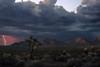 Twilight Desertstorm (Maddog Murph) Tags: twilight lightning storm thunderstorm thunder clouds cumulus bolt electricity cactus joshua tree barrel desert utah southwest monsoon season travel explore photography maddog murph