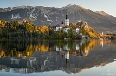 Calm Autumn Morning (Wim Air) Tags: bled slovenia lake wimairat landscape