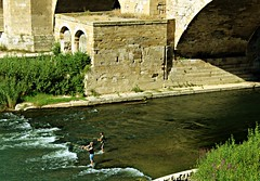 Los pescadores (portalealba) Tags: zaragoza puente aragon españa spain portalealba canon eos1300d ebro agua