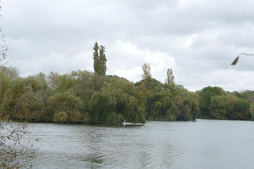 Roding Valley Lake