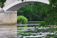 819 juillet 2017 - au bord du Cher entre Saint-Georges-sur-Cher et Chenonceau (paspog) Tags: cher france juillet july juli 2017 rivière fleuve pont river bridge brück fluss