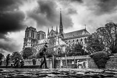 Notre-Dame de Paris (Mustafa Selcuk) Tags: 16mm 2017 paris france fujifilm september travel xpro2 blackandwhite bnw bw siyahbeyaz monochrome monochromatic fujifilmtr street streetshooter streetphotography streetphotpgrapher notredame notredamedeparis moody mood overcast cloudy