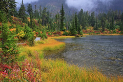 North Cascades Autumn, II (louelke - back and busy) Tags: autumn autumncolors fallcolors northcascades washingtonstate picturelake fog rain colorful north cascades national park