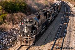 IC 1017   EMD SD70   CN Fulton Subdivision (M.J. Scanlon) Tags: ic1017 icg6030 ic6030 ic6051 gmo902 emd sd402 sd70 sd402r ic illinoiscentral illinoiscentralgulf icg gmo gulfmobileohio cn cnfultonsub canadiannational memphis tennessee tree sky digital merchandise commerce business wow haul outdoor outdoors move mover moving scanlon canon eos engine locomotive rail railroad railway train track horsepower logistics railfanning steel wheels photo photography photographer photograph capture picture trains railfan