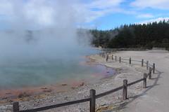 Champagne Pool / Rotorua