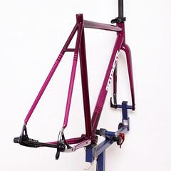 Kualis Cycles Steel Frame Repainted by Swamp Things. (starfuckers / Above Bike Store) Tags: kualiscycles swampthings enve fizik shimano