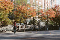 Battery Park City, NYC (instagram.com/lanolan) Tags: 35mm 35mmf2 50mmequiv batteryparkcity day fuji fujifilm fujifilmxpro2 fujinon fujinonxf35mmf2 manhattan newyork newyorkcity newyorknewyork ny nyc outdoors outside thebigapple xpro2