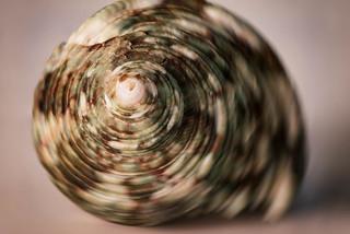 #Macro Mondays #spiral
