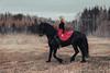 IMG_5284-Recovered (Katerina Dorohova) Tags: horse frieshorse blackhorse horses ladyinred photoshootwiththehorse autumn