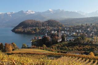 Schloss Spiez ( Baujahr Ursprung 10. Jahrhundert - château castello castle ) am Thunersee in Spiez im Berner Oberland im Kanton Bern der Schweiz