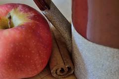 Appalachian Fall Kitchen (msembeck) Tags: macromondays memberschoicefoundinthekitchen cider mug