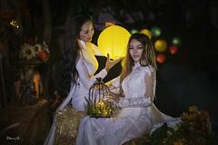Fantasy Art Photography Vietnamese Fashion Model Ao Dai Trang traditional dress by Hai Tuoi - Fantasy Art Photography Vietnamese Fashion Model Ao Dai Trang traditional dress