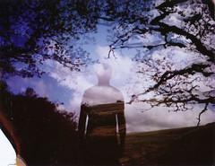 Autumn Roid Week 2017 (The Gentleman Amateur) Tags: polaroid 250 689 expired film analog analogue doubleexposure dartmoor wistmanswood devon england uk polaroidweek roidweek