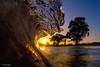 Good morning Norcal! (Omnitrigger) Tags: wave beach trees sunrise morning california nature wild ocean pacific barrel tube shorebreak beachbreak offshore omnitrigger decompreasean goldenhour sunset magic light sunlight landscape breaker