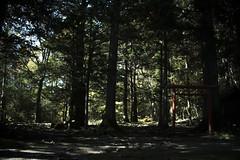 0340 (Shota Fukuda) Tags: 日本 japan 岩手県 遠野 神社 shintoshrine 早池峰神社