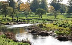 River Avon (robin denton) Tags: charlecotehouse nationaltrust nature charlecotepark warwickshire riveravon rnbavon riverscape river landscape waterscape autumn trees reflections